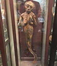 Top 5 Creepiest Museums