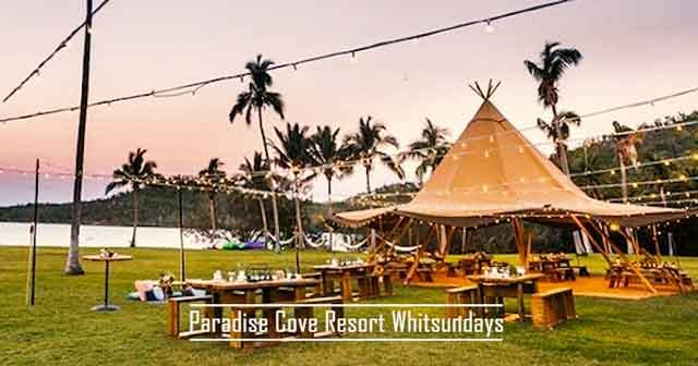 Paradise Cove Resort Whitsundays best glamping destinations in the australia luxury camping resorts vdiscovery arvinovoyage