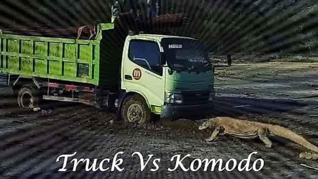 komodo vs truck jurassic park project komodo island indonesia what you need to know vdiscovery arvinovoyage