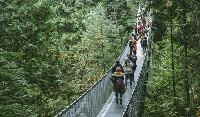 Treetop Adventure10 best places to visit in canada discover fantastic vdiscovery arvinovoyage