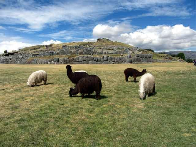 Sacsayhuaman-Peru-top-5-ancient-wall-still-standing-today-vdiscovery-arvinovoyage