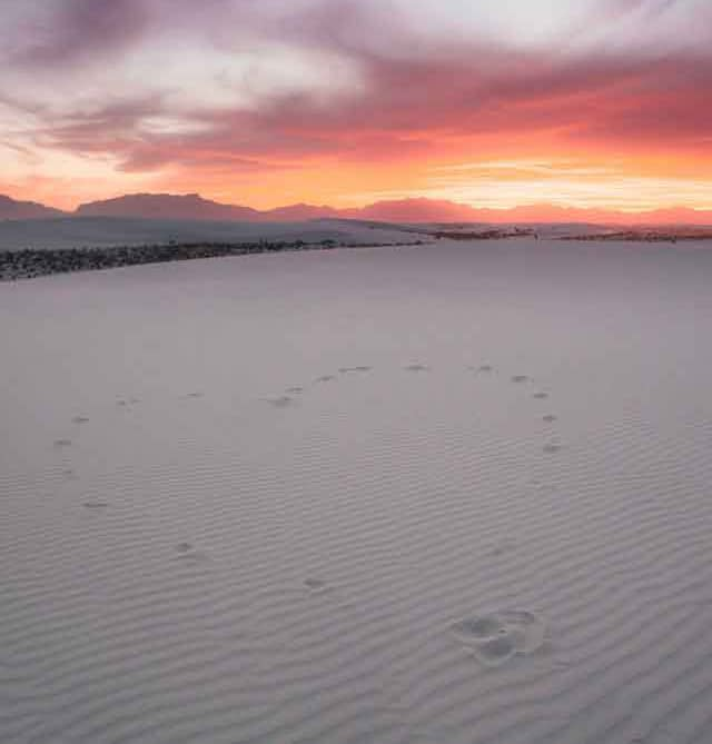 White Sands National Park interesting travel plans  after coronavirus restrictions crisis ended vdiscovery arvinovoyage