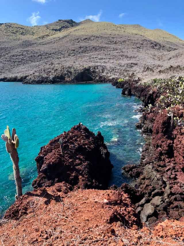 Galapagos Islands the 10 most popular sailing destinations in the world adventures travel vdiscovery arvinovoyage