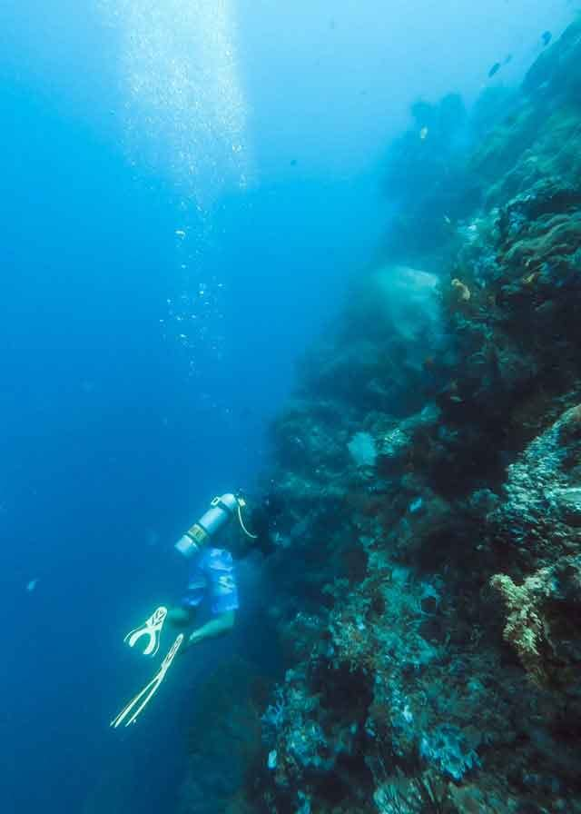 Menjengan sorkeling and diving the 10 best bali beaches vdiscovery arvinovoyage